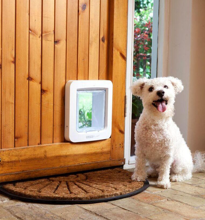 power nazigy along humane door eye ga tech together large electronic sunshiny plus medium ritzy in pet doors adapter automatic with wall fence of dog contain size